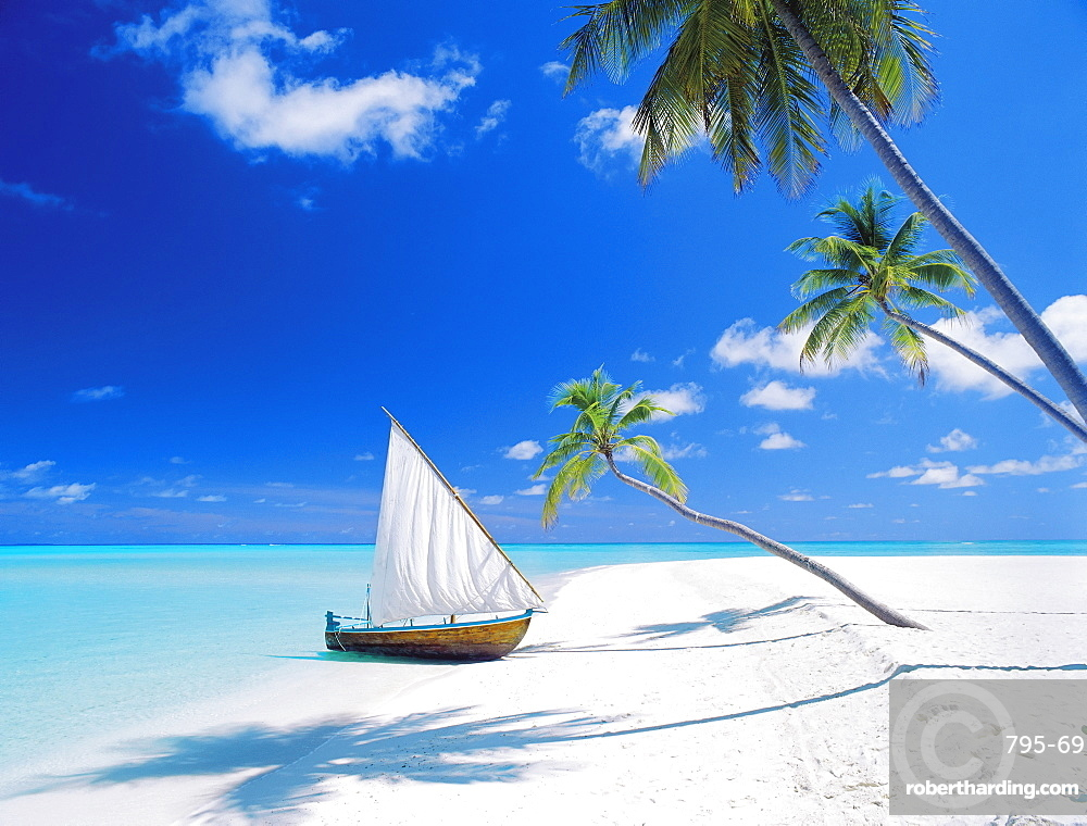 Dhoni (traditional boat) moored by empty beach, Maldives, Indian Ocean, Asia