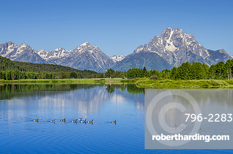 Small lake in Grand Teton National Park, Wyoming, United States of America, North America