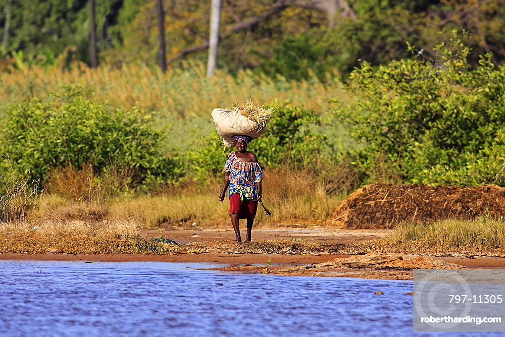 Gambia, People, Woman walking bare footed towards water carrying straw on her head.