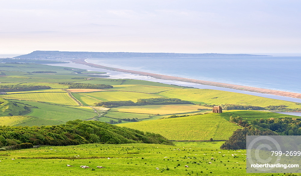St. Catherine's Chapel and rolling countryside with views beyond to Chesil Beach and the Isle of Portland, Dorset, England, United Kingdom, Europe