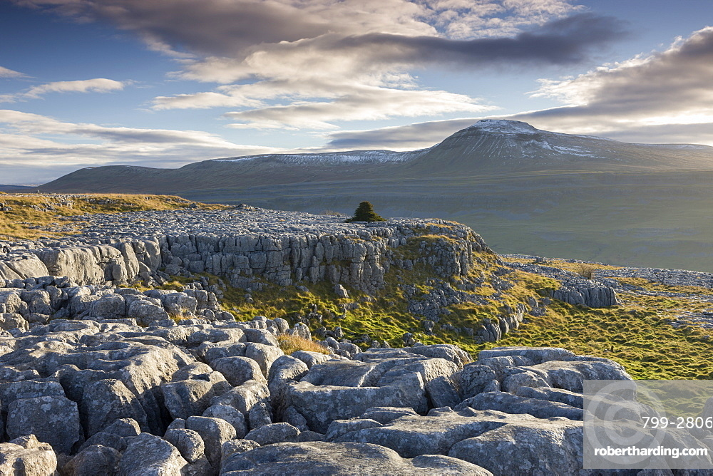 Ingleborough mountain from the limestone pavements on Twistleton Scar End, Yorkshire Dales, England, United Kingdom, Europe