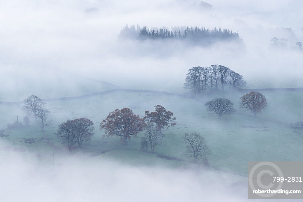 Mist covered rolling countryside at dawn, Lake District, Cumbria, England, United Kingdom, Europe