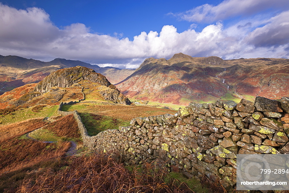Drystone wall near the Langdale Valley in autumn in the Lake District National Park, Cumbria, England, United Kingdom, Europe
