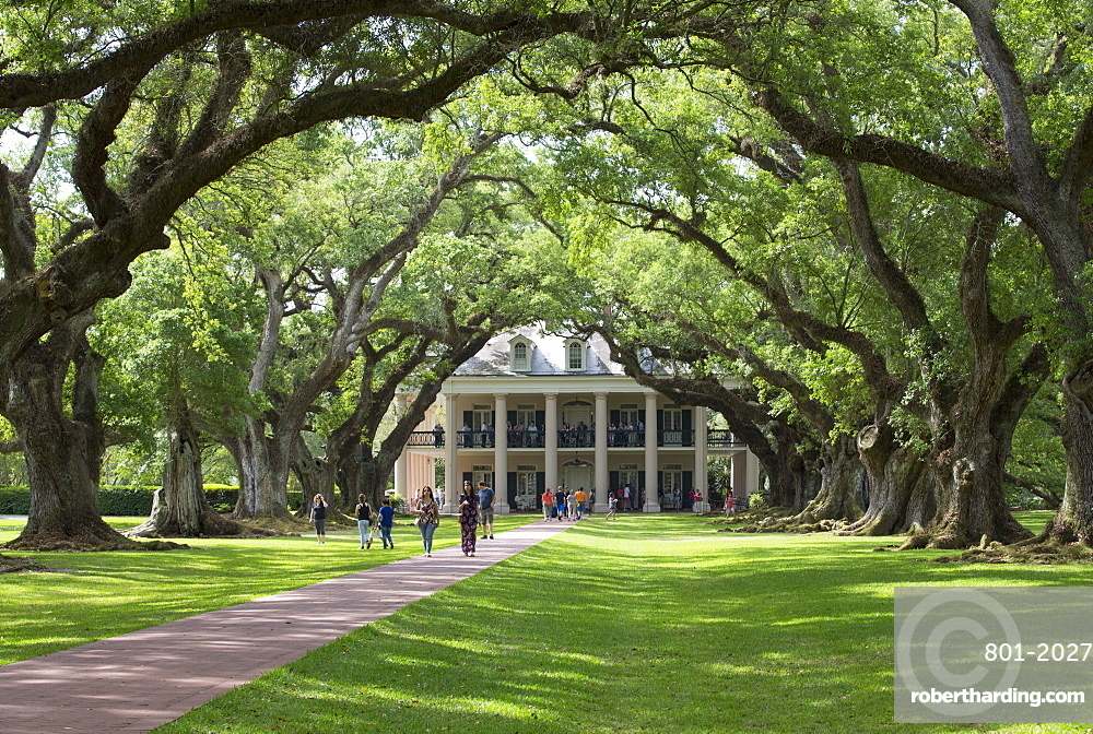 The 300 Year Old Oak Trees, Oak Alley Plantation, built 1830s, near St. James, Louisiana, United States of America, North America