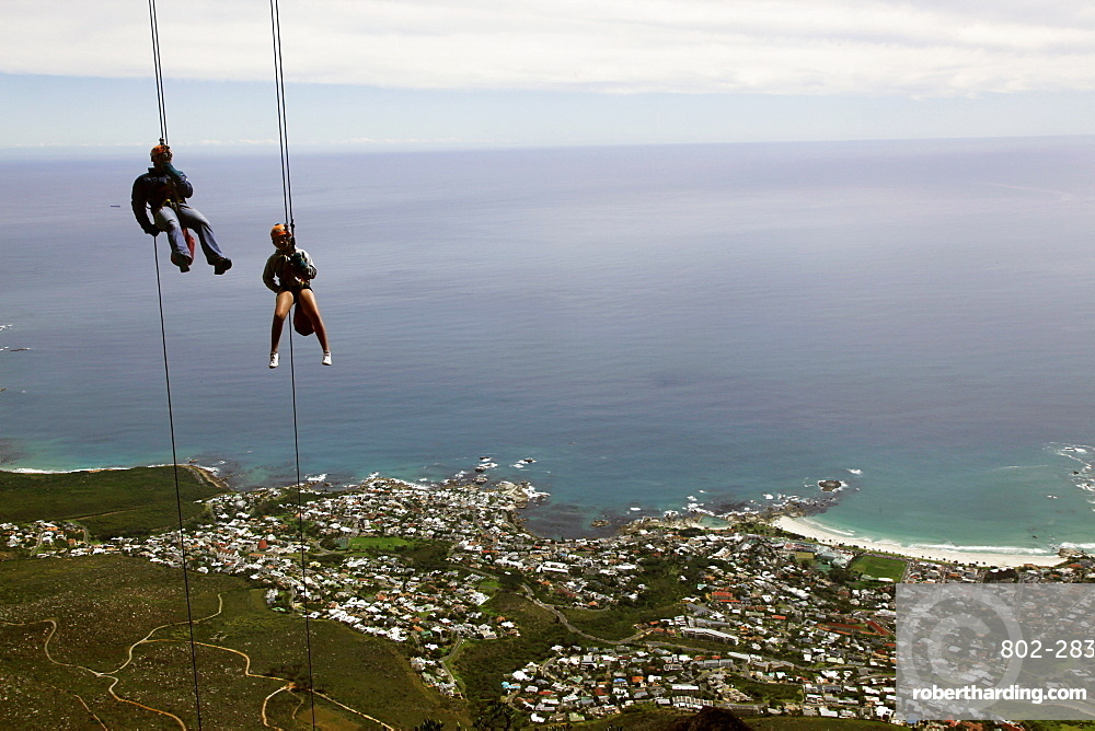 Abseilers descend cliffs on Table Mountain above Cape Town, Cape Peninsula, Western Cape, South Africa, Africa
