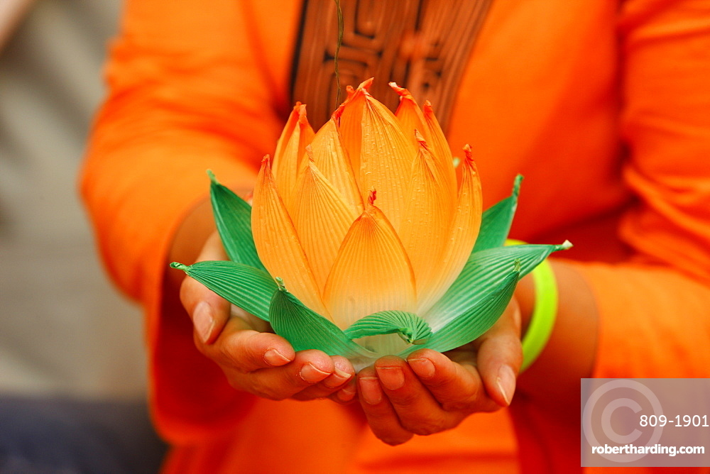 Paper lotus flowers, Seoul, South Korea, Asia
