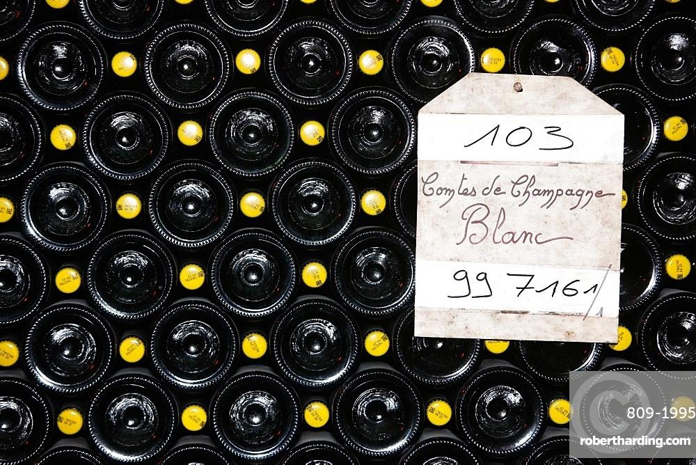 Taittinger champagne cellar, Reims, Marne, France, Europe