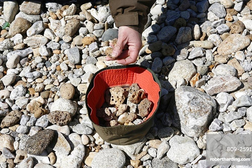 Pebbles, Noirmoutier, Vendee, France, Europe