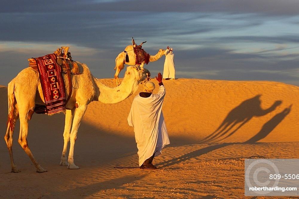 Camel drivers meeting in the Sahara, Douz, Kebili, Tunisia, North Africa, Africa