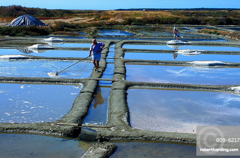 Salt marshes of Guerande, Loire Atlantique, France, Europe