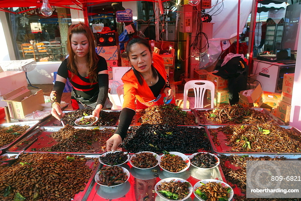 Display of fried insects, Food Market, Vientiane, Laos, Indochina, Southeast Asia, Asia