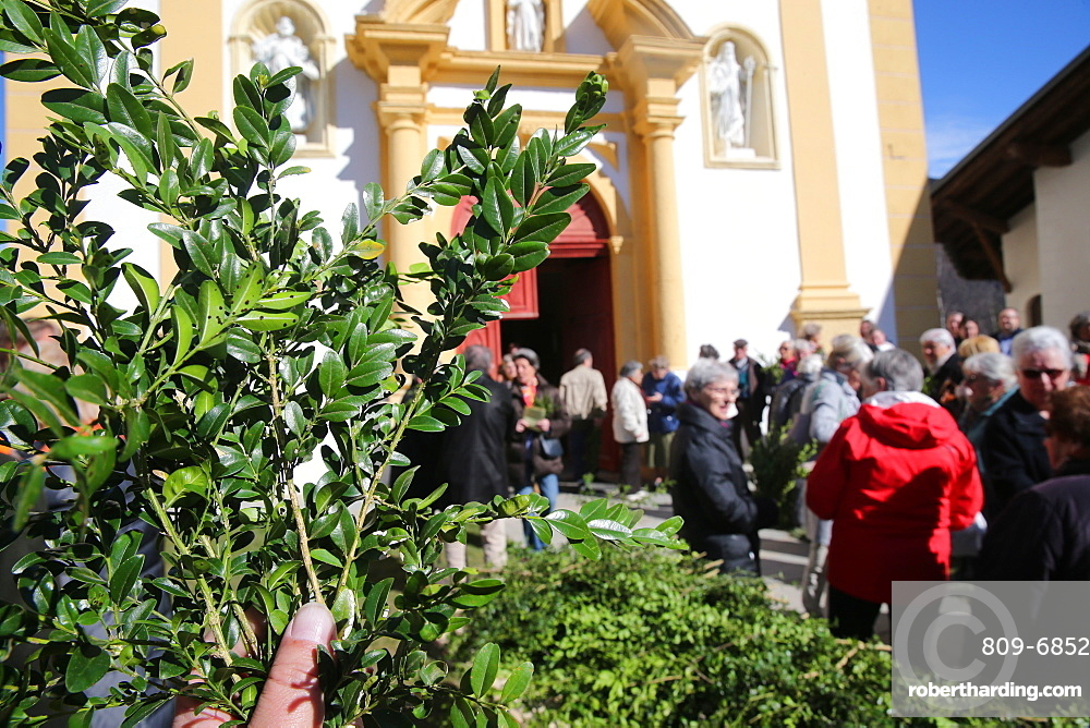Palm Sunday Mass, Saint-Nicolas de Veroce church, Saint-Nicolas-de-Veroce, Haute-Savoie, France, Europe