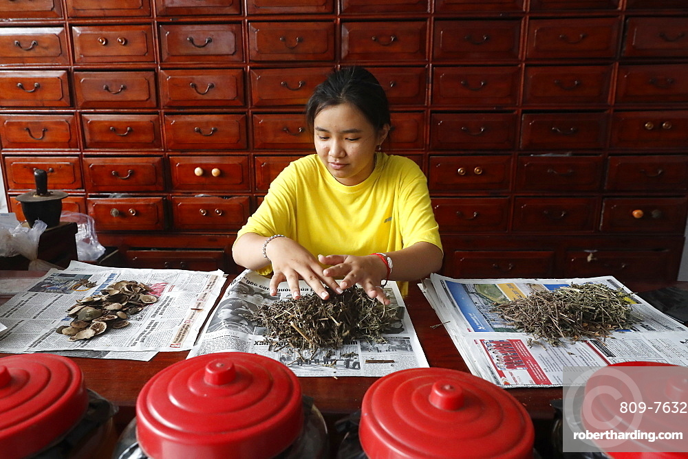 Woman working in a traditional Chinese pharmacy, Ha Tien, Vietnam, Indochina, Southeast Asia, Asia