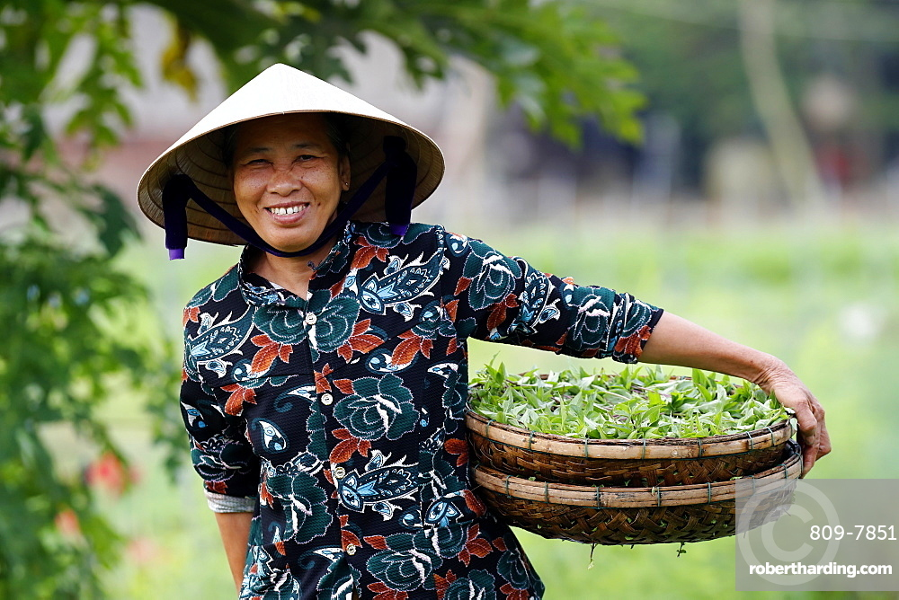 Smiling Vietnamese woman wearing the traditional palm leaf conical hat, Hoi An, Vietnam, Indochina, Southeast Asia, Asia