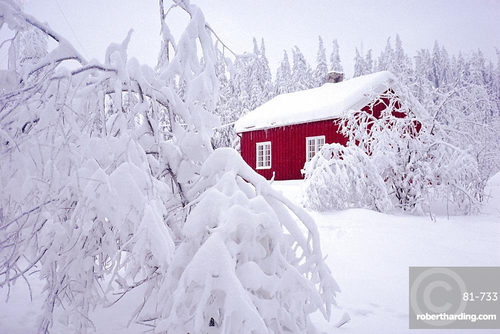 Nordmarka, Oslo, Norway, Scandinavia, Europe
