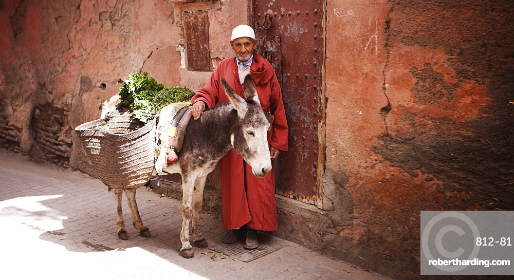 Man with donkey, Marrakesh, Morocco, North Africa, Africa
