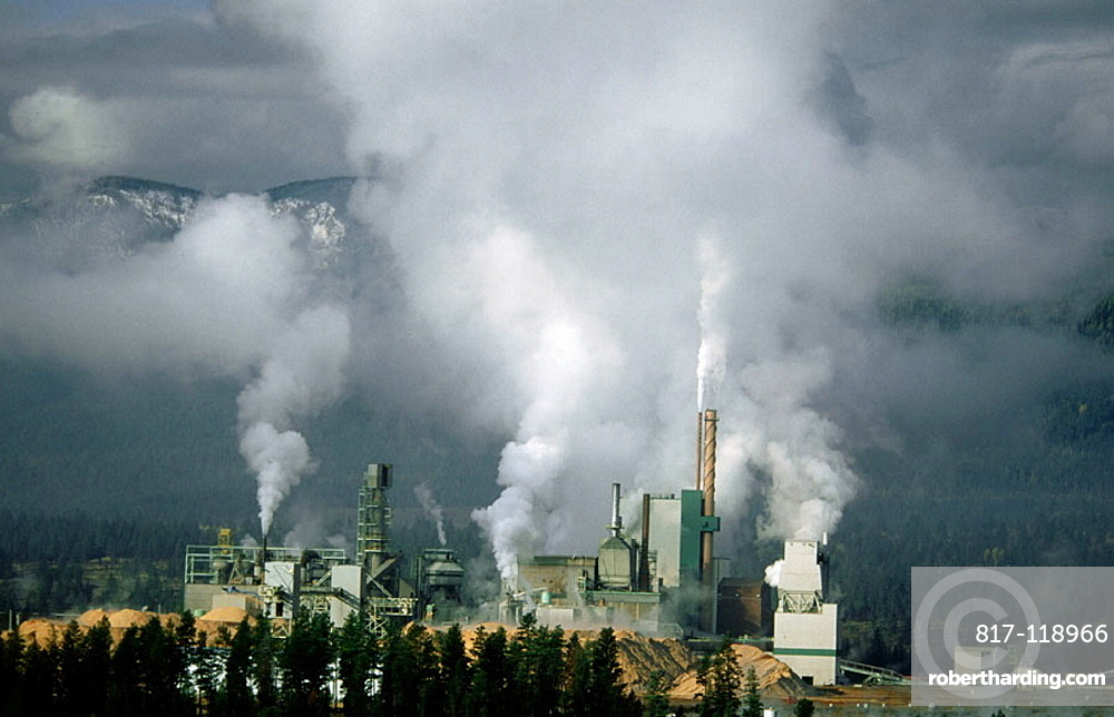 Air pollution from Skookumchuck Pulp Mill, British Columbia, Canada