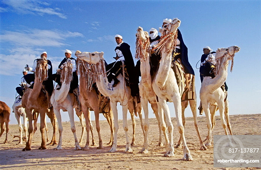 Bedouin men at Sahara festival, Douz, Tunisia