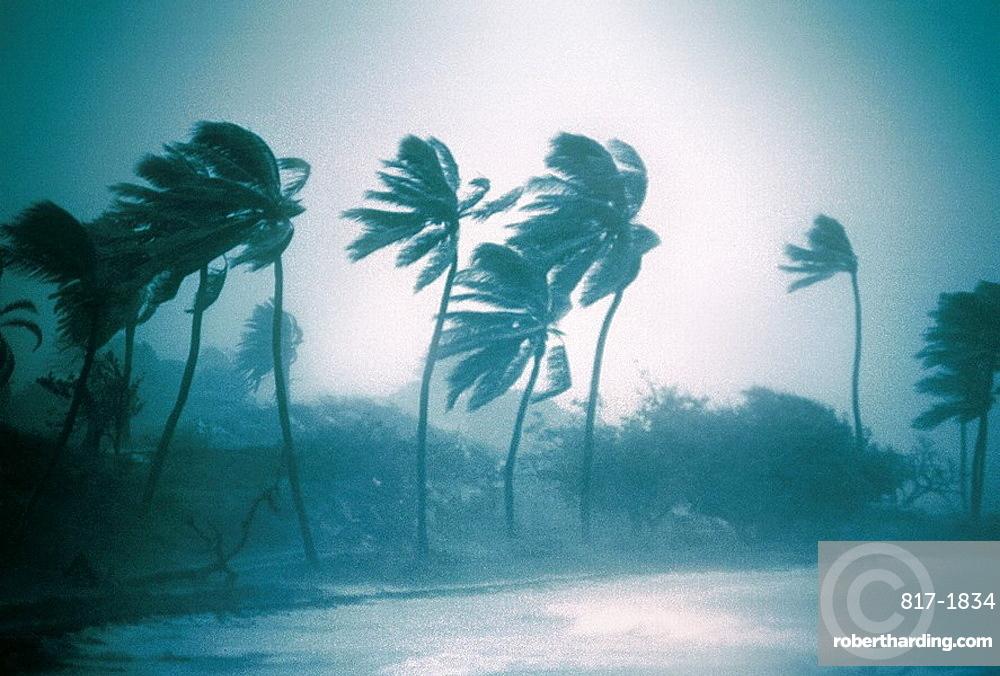 Hurricane Luis (september 1995), North Eastern Antigua Island, Caribbean