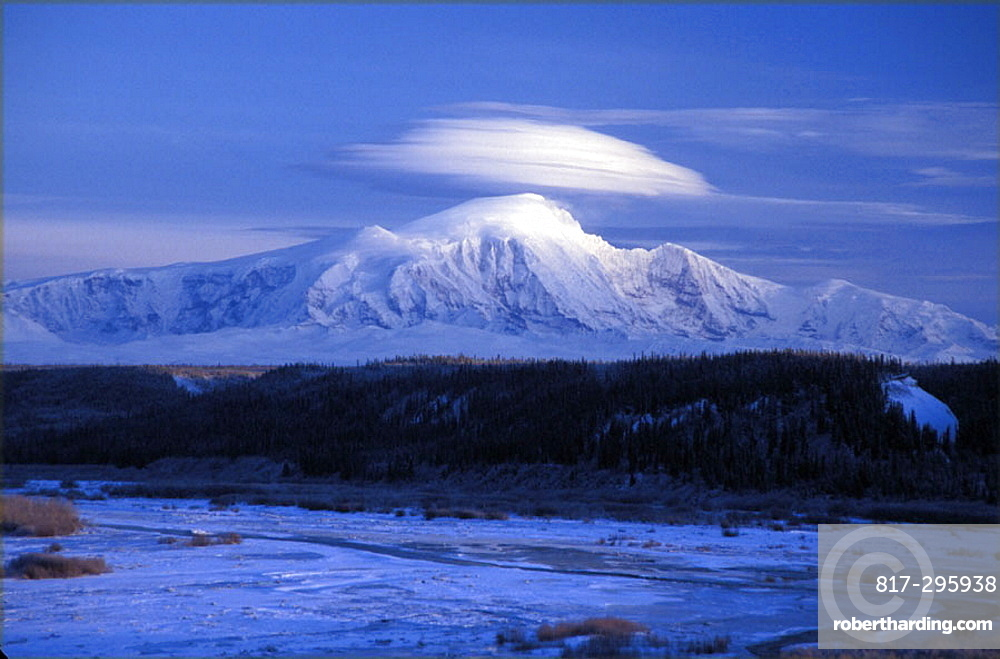 scenery, landscape, winter, Mount McKinley, mountain, wood, snow, dusk, twilight, USA, America, United States, North A. scenery, landscape, winter, Mount McKinley, mountain, wood, snow, dusk, twilight, USA, America, United States, North A