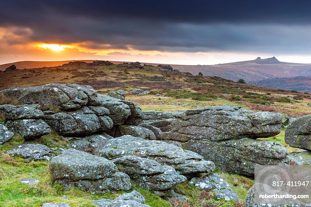 Granite rocks on the moorland at Hayne Down view towards Haytor Rocks in Dartmoor National Park, Devon, England, UK, Europe