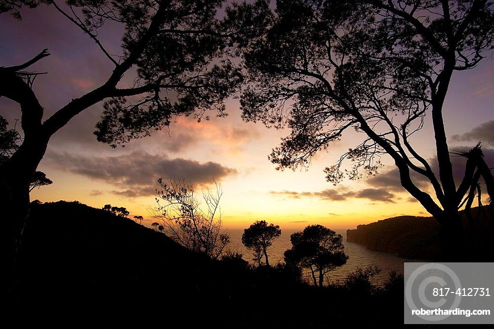 Cap Andritxol, Andratx, Ponent County, Mallorca, Balearic Islands, Spain