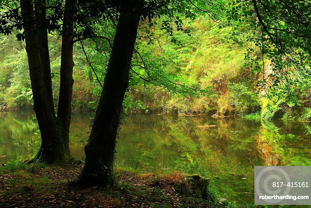 Landscape in the reservoir Arbon Navia council Asturias