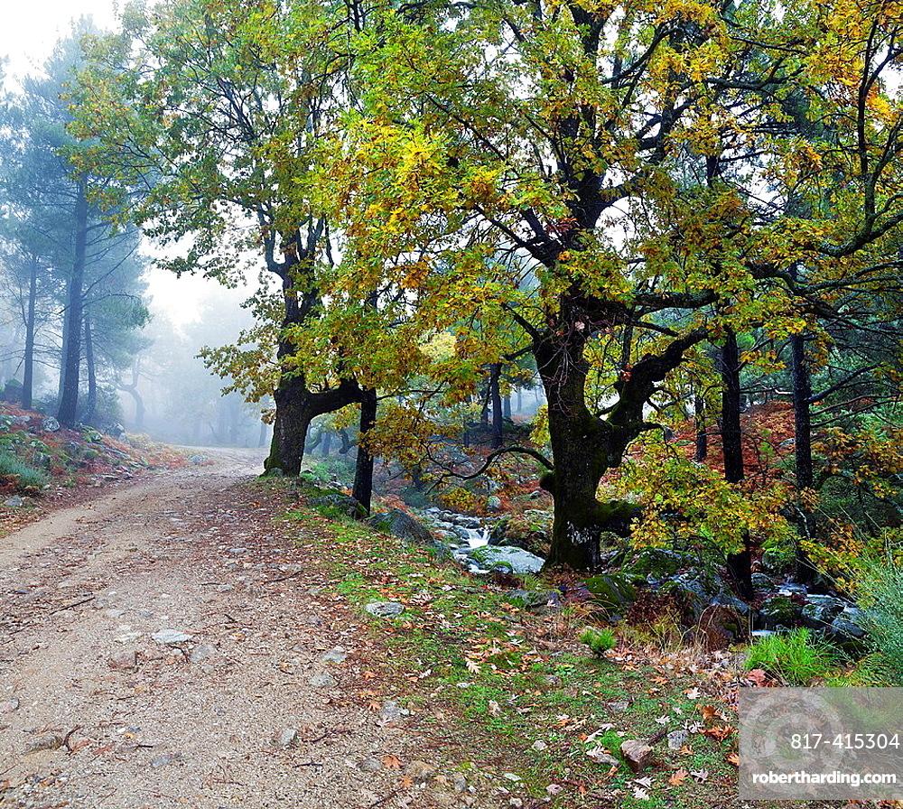 Garganta La Graja road in the Sierra de Gredos Piedralaves