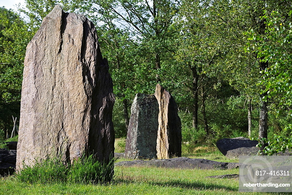 Monteneuf alignments, the upright stones, Morbihan, Brittany, France