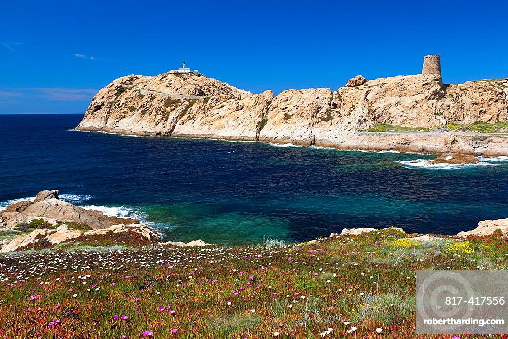 France, Corsica, Haute-Corse Department, La Balagne Region, Ile Rousse, Ile de la Pietra island, lighthouse and Genoese tower