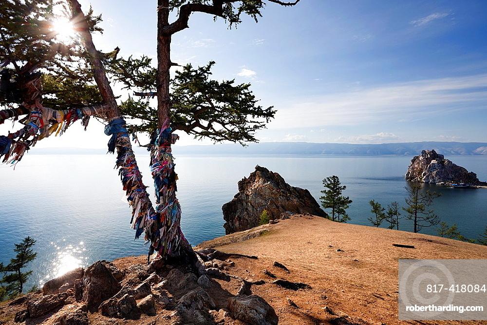 Backlight of a shamanic tree with the bottom of Lake Baikal