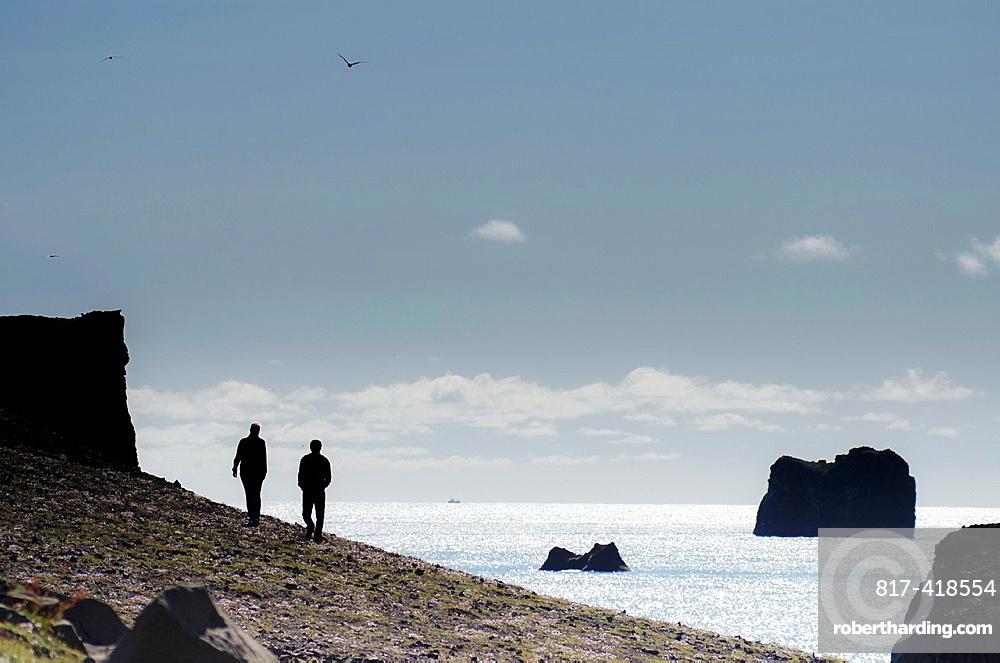 Vik coastaline, South Iceland