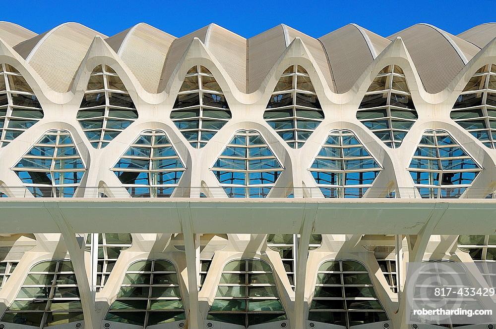 Ciudad de las Artes y las Ciencias Valencia Spain