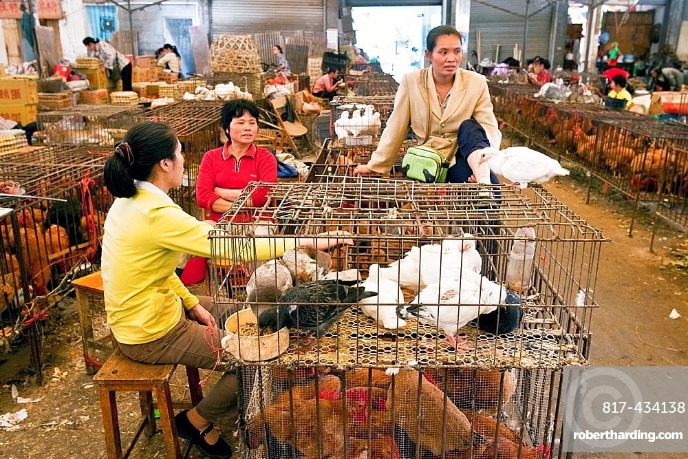 Bird Market, Yangshuo, Guangxi Province, China