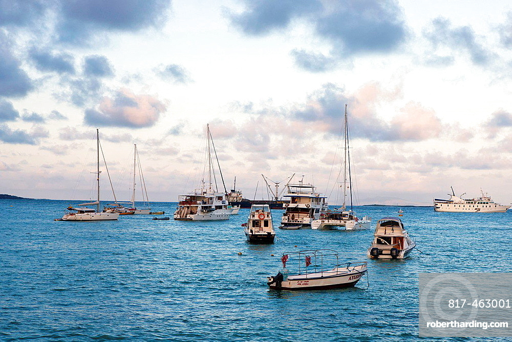 Boats outside of Puerto Ayora, Santa Cruz Island, Galapagos, Ecuador.