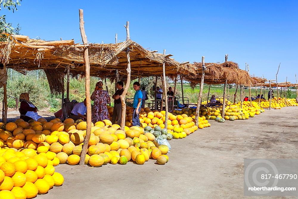 Melons for sale in an outdoor market, Shabboz, Beruniy District, near Urgench, Uzbekistan.