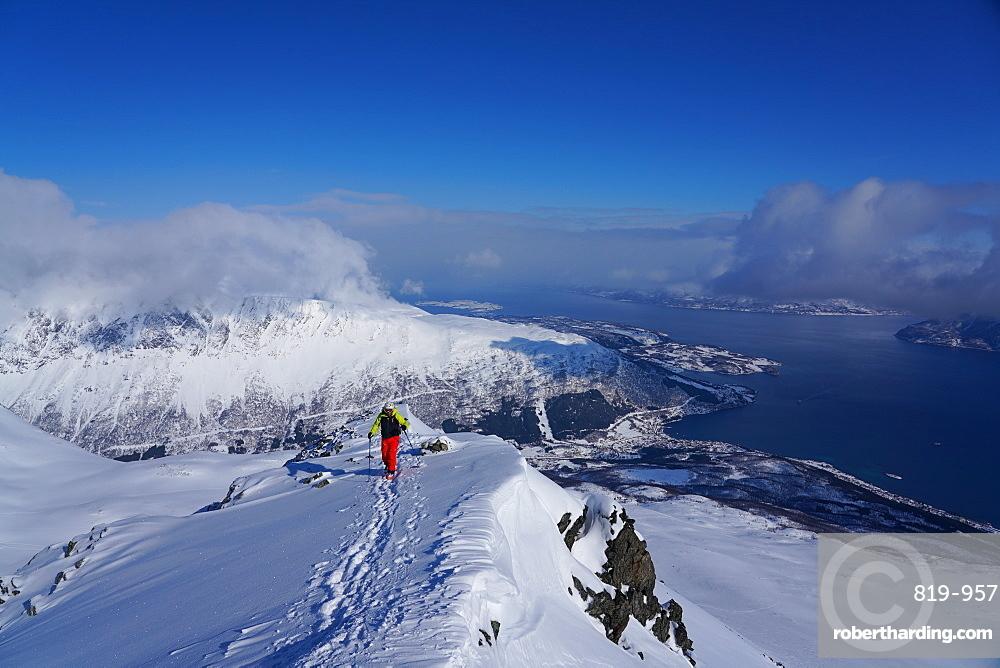 Ski touring in the Lyngen Alps, Lyngseidet, Lyngen peninsula, Troms County, Norway, Scandinavia, Europe