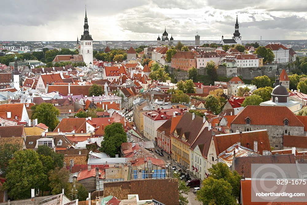 View over the rooftops of the old town of Tallinn, UNESCO World Heritage Site, Estonia, Baltic States, Europe