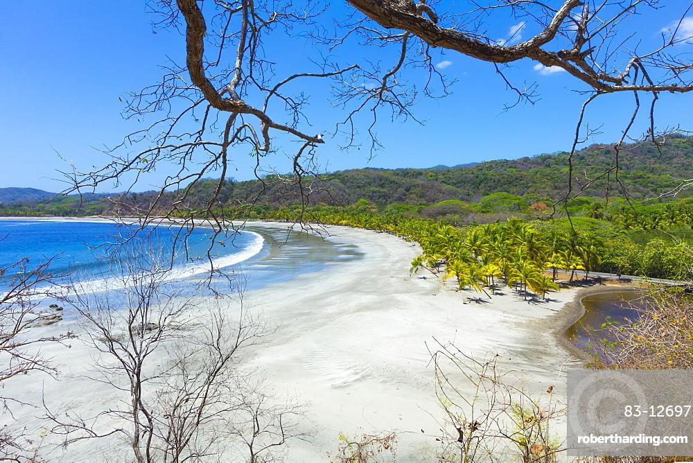 Beautiful palm fringed white sand Playa Carrillo, Carrillo, near Samara, Guanacaste Province, Nicoya Peninsula, Costa Rica, Central America