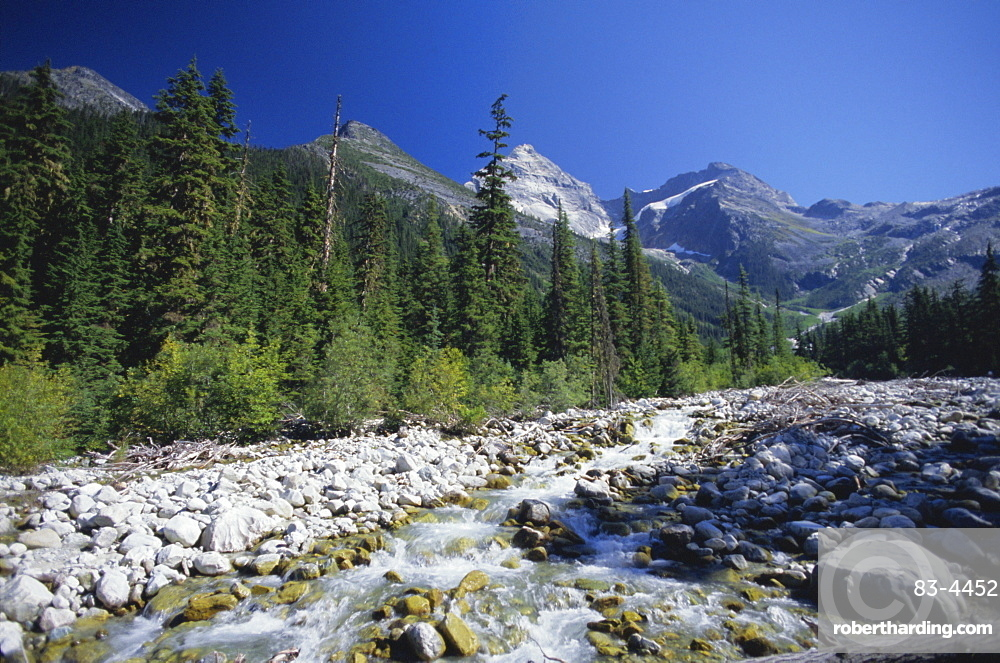 The Illercillewaet River valley and the Sir Donald Range of the Selkirk Mountains, Glacier National Park, British Columbia (B.C.), Canada, North America