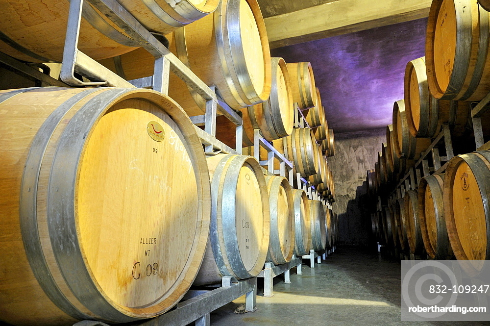 Stacked oak barrels for the production of barrique wines at a winery in Maipu, Mendoza Province, Argentina, South America