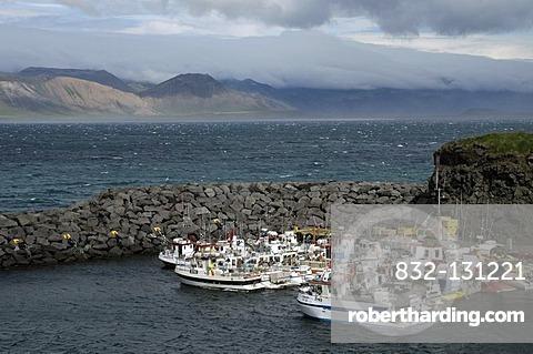 Port of Arnarstapi, SnÊfellsnes Peninsula, Iceland, Europe