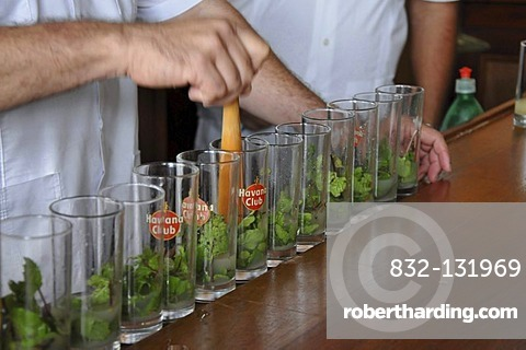 Bartender mixing a Mojito cocktail with rum, mint and lime, La Bodeguita del Medio, Empedrado 207, old town, Havana, Cuba, Caribbean, Central America