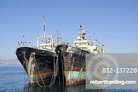 Shipwrecks, old ships, pelicans, the sea, Coquimbo, La Serena, Norte Chico, northern Chile, Chile, South America