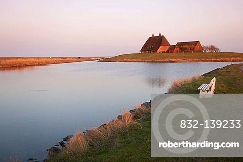 The Kirchwarft dwelling mound with the church and the pastorate in the evening light, Hallig Hooge Island, North Sea, Schleswig-Holstein's Wadden Sea National Park, UNESCO World Heritage Site, Northern Friesland, Northern Germany, Europe