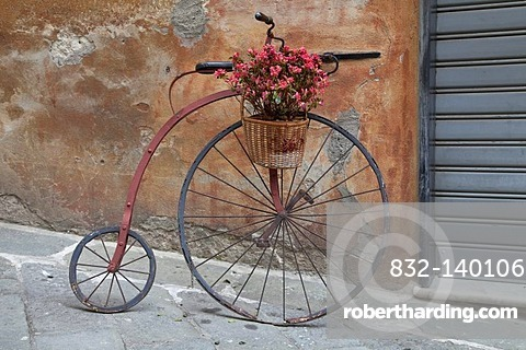 Historic bicycle with a flower pot, Savona, Riviera, Liguria, Italy, Europe