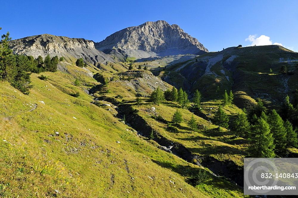 Mt. Tete de Boulonne, Mercantour National Park, Haute Verdon mountains, Alpes-de-Haute-Provence, Region Provence-Alpes-Cote d'Azur, France, Europe