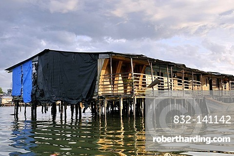 Poor dwellings, wooden stilt houses, mangrove area in the estuary of the Rio Anchicaya river in the Pacific at high tide, Bajamar slum, Buenaventura, Valle del Cauca, Colombia, South America