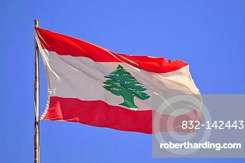Lebanese national flag with the Cedar of Lebanon, Beirut, Lebanon, Middle East, Asia