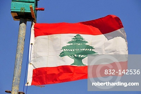 Lebanese national flag with a cedar of Lebanon, Beirut, Lebanon, Middle East, Orient